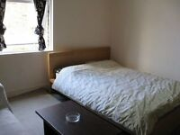 Fortnightly pay room with ensuite WC on Balham High Road