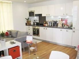 Huge 1 bed flat in Brixton near station!
