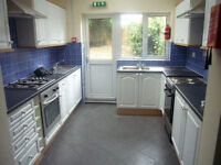 Friendly girl wanted to share large room, large friendly clean house share in Acton.