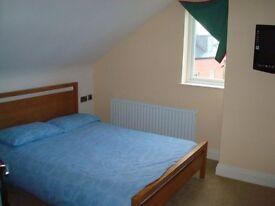 Amazing Room in Clapham
