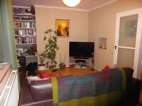 Double room available in lovely Newington Green flat