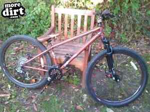 P2 Specialized Cromo dirt jumper