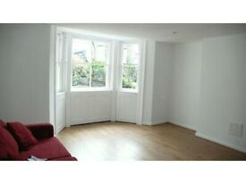 1 Bed Flat With garden- Stockwell