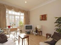 STREATHAM/BRIXTON HILL - Housemate required