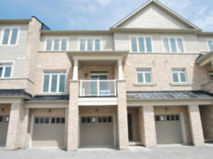 3-bedroom brand new pet-friendly home for rent in Pickering