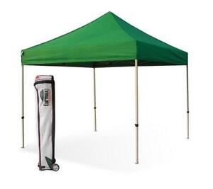 Replacement Canopy 10x10  sc 1 st  eBay & 10x10 Canopy | eBay