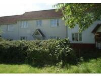 3 bedroom house in Wilkinson Grove, Braintree
