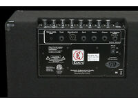 Eden EC15 180 watt bass amplifier