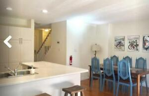 Fall Getaway - Newly Renovated 3 bedroom 4 Bath Condo
