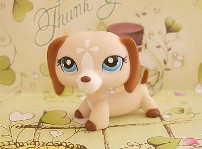 LITTLEST PET SHOP DACHSHUND PUPPY DOG #1491 on Rummage