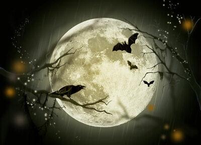 Halloween Short Stories Audio (Short Ghost & Horror Stories - Halloween - Audio Book Mp3 DOWNLOAD -)