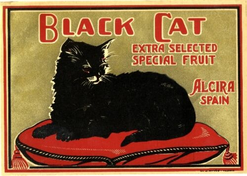 Alcira Spain Spanish Black Cat Orange Citrus Fruit Crate Label Print Halloween