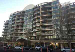 Large Bedroom Opposite UNSW Kingsford Eastern Suburbs Preview