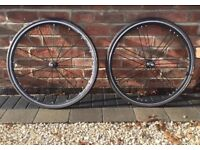 Campagnolo Shamal Ultra Road Bike Wheels