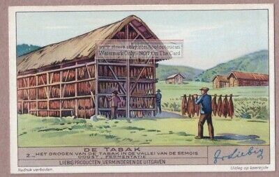 Tobacco Drying Sheds In The Belgian Semois Valley 1930s Trade Ad  Card d'occasion  Expédié en Belgium