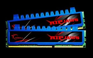 Barrettes de mémoire G.SKILL Ripjaws Series 4GB (2 x 2GB)