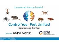 Pest Control Rat Mice bedbugs Cockroaches Pest Extermination NPTA-RSPH Qualified CALL NOW