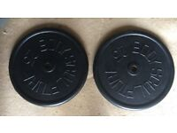 50kg 2x25kg BODY SCULPTURE CAST IRON WEIGHT PLATES