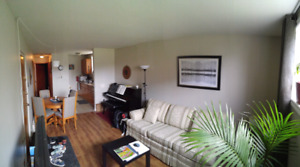 1 bedroom apartment  $564/mth.