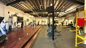 Affordable Personal Training keeping you accountable!! London Ontario image 1