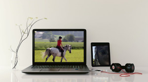 CERTIFIED EQUESTRIAN LESSONS-ONLINE