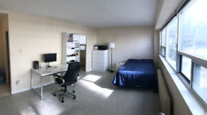 Bachelor apartment (subletting for July)