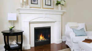 Vemont Casting Direct Vent Natural Gas Fireplace