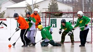 Join FCSSCs Newest League...BROOMBALL! London Ontario image 4