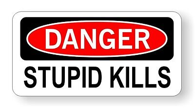Danger Stupid Kills Hard Hat Helmet Decal Sticker Vinyl Label Warning Funny