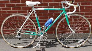 Norco LadySport 10 Speed Road Bike