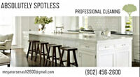 Absolutely Spotless Professional Cleaning
