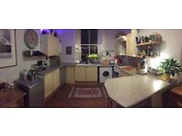 Experienced Cleaner, Domestic and Business