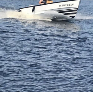 16ft cape boat and 50hp honda