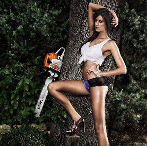 Sell me your Broken chainsaws Rosebud West Mornington Peninsula Preview
