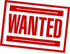 WANTED VE Towbar.! Muswellbrook Muswellbrook Area Preview