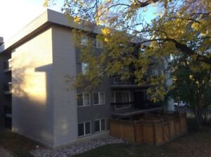 Condo for Rent in Great Downtown Location