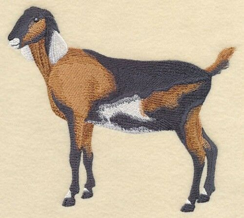 Embroidered Sweatshirt - Nubian Goat #1 J7272