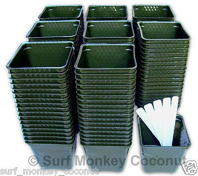 150 Flower Pots & Plant Labels! BEST Size for Nursery Seed Starts Square