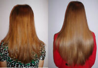 Rallonges de cheveux - Hair Extensions