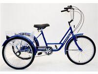 """NEW KENTEX ADULT TEEN TRICYCLE 20"""" 6 gearCargo Trike Brand NEW"""
