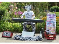 MELLOW ZEBRA - Pianist / Entertainer available for Weddings / Functions