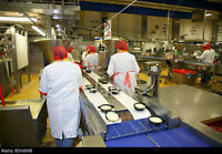 Food Production Line