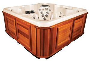 Arctic spa tundra hot tub