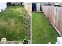 Garden maintenance-Lawn Mowing - Grass cutting - Garden Tidy up-Gardening services - Local gardener