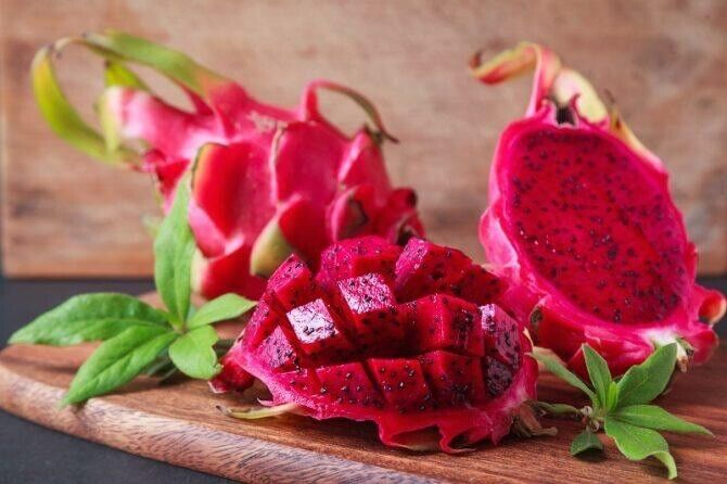 "RED DRAGON FRUIT (PITAYA) PLANT CUTTINGS: 7""-11"" INCH (2 TOTAL)"