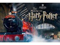 Harry Potter Making of - Warner Bros Studio - 30/05/2017 - 18h30