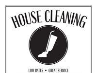 Housekeeper light work ironing