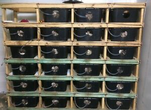 Complete rodent breeding set up including breeder rats Cooranbong Lake Macquarie Area Preview