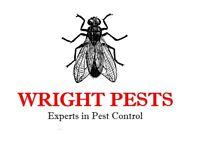 Pest Control Service.