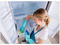 The Best Domestic Cleaner,EverythingShiningClean,Reliable,Cleaning Lady,Cleaner,Good,House Cleaner